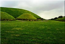 N9973 : Satellite tombs next to the main burial mound at Knowth by David Gearing