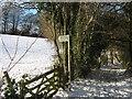 TQ4457 : Footpath on Old Harrow Lane by David Anstiss