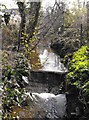 SJ2307 : Weir on Lledan Brook by Penny Mayes