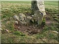 NS3678 : Walton Farm chambered cairn by Lairich Rig
