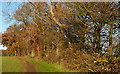 SU9088 : Footpath to Flackwell Heath by Graham Horn