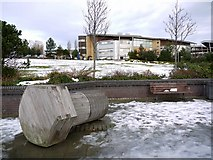 NZ4057 : St Peter's Campus of the University of Sunderland,  from the riverside path by Andrew Curtis