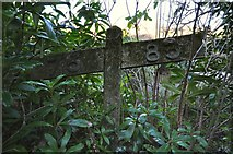 SS4939 : A gradient post beside the River Caen where once was the Barnstaple to Ilfracombe line by Roger A Smith