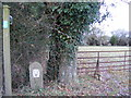 TM3371 : Footpath to Low Grange Farm by Adrian Cable