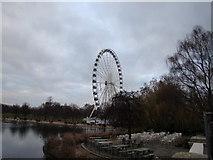 TQ2780 : Ferris Wheel in Winter Wonderland, viewed from the Serpentine by Robert Lamb