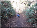 NZ2115 : Path to Roman bridge, Piercebridge by David Hawgood