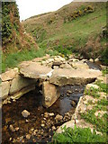 SW4237 : Footbridge above Porthmeor Cove by Philip Halling