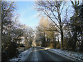 TG0904 : Barnham Broom Road, near Kimberley Park by Adrian S Pye
