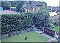 SJ6887 : Bridgewater Canal, Lymm, Cheshire by John Fielding