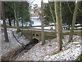 NZ1530 : Road bridge over Witton Row Beck at Witton Castle by peter robinson