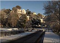 SX9164 : Trematon Avenue, Torquay by Derek Harper