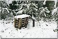 TQ2078 : Mini-beast homes by Alan Murray-Rust