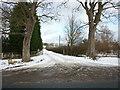 TA1557 : The way to Ulrome Grange near Ulrome, East Yorkshire by Ian S
