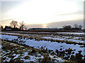 TM4194 : Looking into the sunset at Bull's Green, Toft Monks by Adrian S Pye