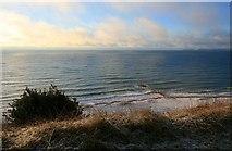 SZ1090 : Groyne below East Cliff by David Lally
