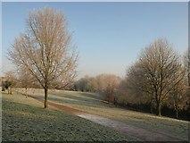 SX9265 : St Marychurch Downs by Derek Harper