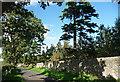 NZ0255 : Drive near Kiln Pit Hill by Stephen Richards
