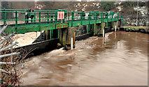 J3470 : The Stranmillis weir, Belfast (9) by Albert Bridge