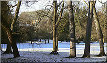 TL4459 : Magdalene College grounds by Alan Murray-Rust