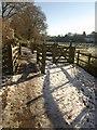 SX7961 : Cycle path from Dartington by Derek Harper