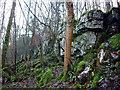 SD5078 : Limestone scar, Hale Fell by Karl and Ali