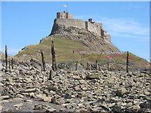 NU1341 : Lindisfarne Castle by David Purchase