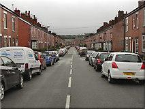 SD7807 : Knowles Street by David Dixon