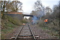 TF9915 : Bridge 1698 - Vegetation Clearance Team by Ashley Dace