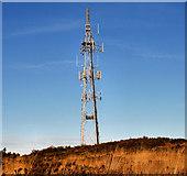 J3630 : Drinnahilly mast near Newcastle (2) by Albert Bridge