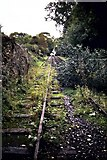 SJ6902 : The Hay Inclined Plane, Coalport by Michael Westley