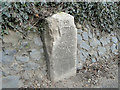 TG2606 : Old Milestone in the parish of Trowse Newton by Adrian S Pye