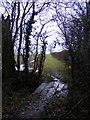 TM3665 : Footpath to Rookery Farm & Pipney Hill by Adrian Cable
