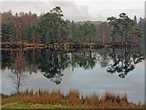 SD3299 : Tarn Hows by K  A