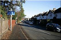 SK6443 : Station Road, Burton Joyce by David Lally