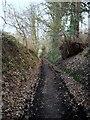 NZ1564 : Peth Lane, Ryton by Andrew Curtis