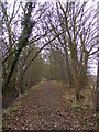 TM3469 : Segmore Lane Footpath to Mill Road by Adrian Cable
