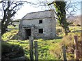 S3130 : Derelict Cottage by kevin higgins