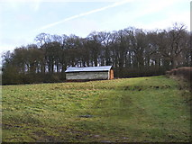 TM3669 : Barn and Hencoup Wood by Adrian Cable