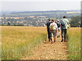 SP1439 : Chipping Campden seen from Dover's Hill by John Brightley