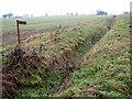 TM0096 : Path alongside a ditch by Penhill Farm by Evelyn Simak
