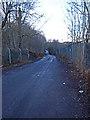 NS4169 : Reilly Road by wfmillar