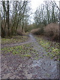 SD7328 : Footpath near Foxhill Bank House by Alexander P Kapp