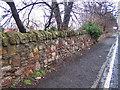 NT3566 : Sandstone wall by Richard Dorrell
