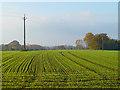 SP7611 : Farmland, Dinton by Andrew Smith