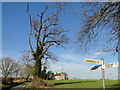 TG3606 : Looking up Wood Lane from the junction by Adrian S Pye