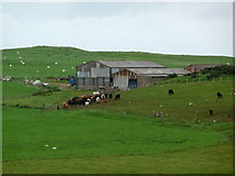 SH7683 : Agricultural buildings at Parc Farm, Great Orme by Phil Champion