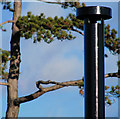 J3473 : Ventilation pipe, Ormeau Park, Belfast by Albert Bridge