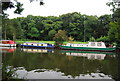 TQ7557 : Narrowboats moored on the Medway by N Chadwick