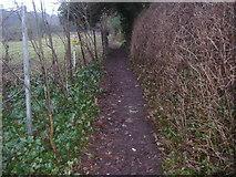 TQ1753 : Footpath between Dell Close and School Lane, Mickleham by David Howard