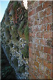 TQ1352 : Polesden Lacey: herb garden wall by Christopher Hilton